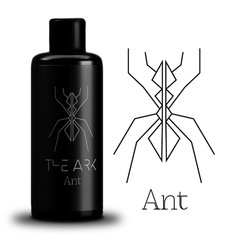 the-ark-ant